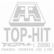 Top-Hit-Logo